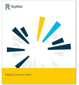 Reprisk directors brief2