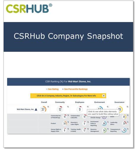 CSRHub Company Snapshot Report