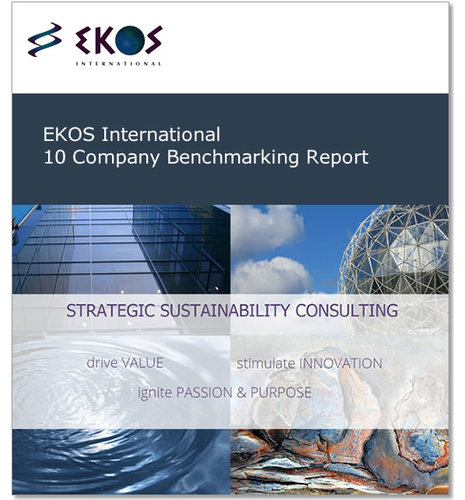 EKOS International 10 Company Benchmarking Report